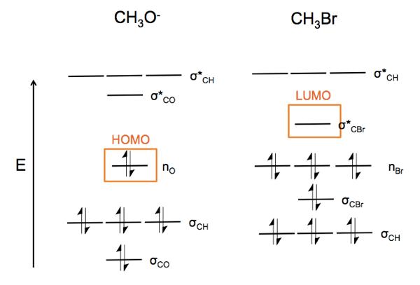 Organic Chemistry 05 Frontier Molecular Orbital Theory