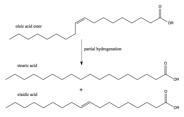what is capric acid